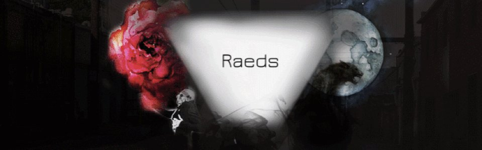Raeds's Background